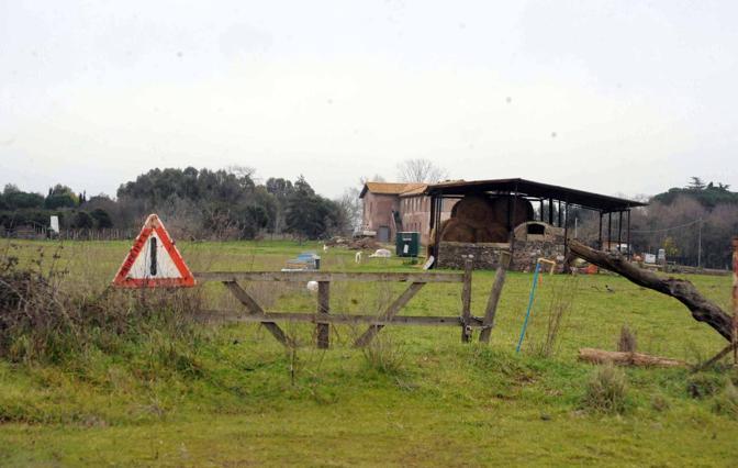 Cemento sul Parco dell'Appia Antica: un capanno agricolo nell'area protetta. Alcuni edifici copme qiesto sono stati abusivamente trasformati in ristoranti (foto Mario Proto)