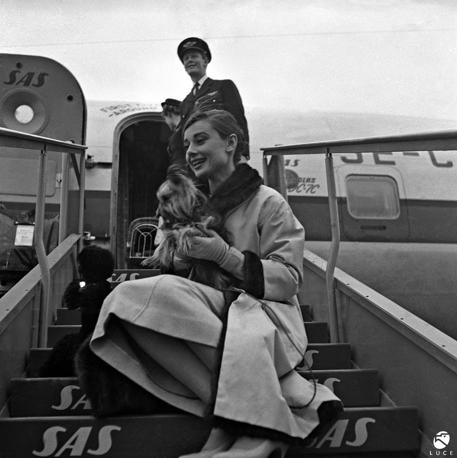 1959, Roma. Audrey Hepburn in arrivo a Ciampino. L'attrice inglese irrompe nel mondo del cinema nel 1952 con Vacanze romane di William Wiler e, proprio per questa interpretazione d'esordio, nel 1954 le viene assegnato l'Oscar come migliore attrice. Da allora rimarrà un'icona di stile e di grazia.