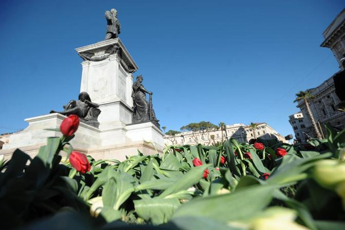 Tulipani e prati all'inglese in piazza Cavour (Jpeg)