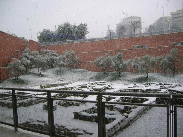 I giardini dell'Auditorium