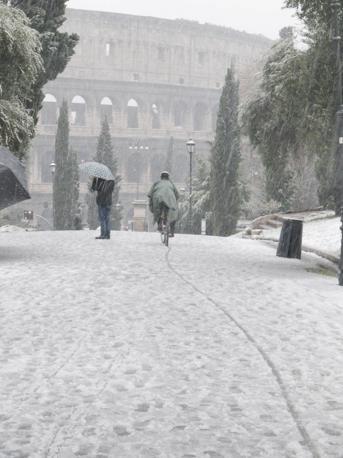 Un ciclista si avventura sul viale del parco di Colle Oppio, coperto di neve (foto Rino Bianchi)