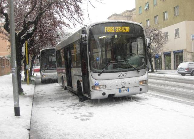 Autobus fuori servizio per la troppa neve: non hanno pneumatici adatti (foto Ansa)