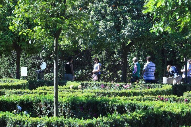 Il labirinto del giardino di Boni (Jpeg)