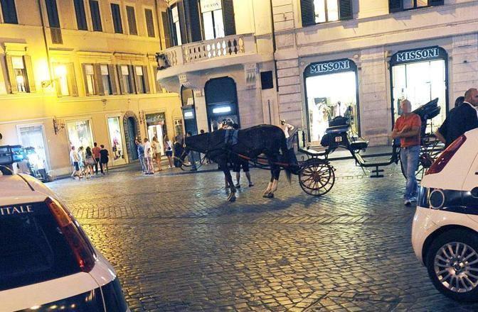 Controlli della polizia municipale dopo l'incidente al cavallo (foto Jpeg)
