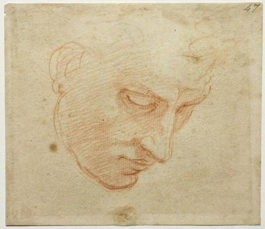 Prima della Sistina: in mostra alla Camera, i disegni preparatori per gli affreschi della Cappella