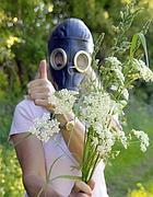 Guerra alle allergie (Marka)
