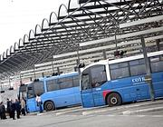 Una stazione dei bus Cotral (Eidon)