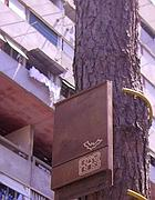 Una delle Bat-box installate a Corviale