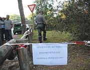 Un cartello per la sicurezza (Foto Faraglia)