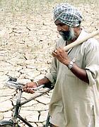 Un contadino sikh (Reuters)