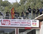 I manifestanti sul tetto di via di Casalotti 300