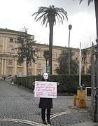 «Funerali» di una palma all'interno dell'ospedale San Giovanni