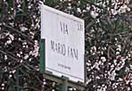 32 anni dopo - Corone di fiori in via Fani, dove il 16 marzo 1978 un commando delle Br rapì l'allora presidente della Dc Aldo Moro e uccise i cinque agenti della scorta. Oggi, 32 anni dopo, le corone delle istituzioni, a partire dal capo dello Stato Napolitano, ma anche i privati cittadini, ricordano quella drammatica giornata per l'Italia (Jpeg)