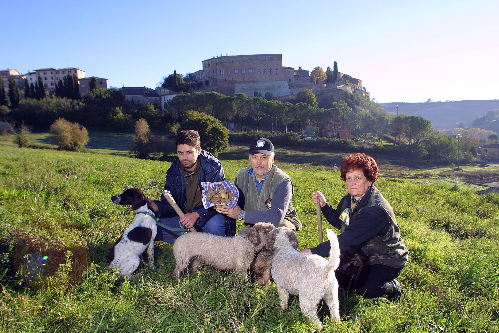 Cercatori di tartufi a San Giovanni d'Asso (Sestini)