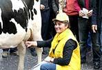 Guerra del latte - È tornata la guerra della latte con un blitz di migliaia di allevatori della Coldiretti che da martedì mattina all'alba con i trattori stanno assediando la Centrale del Latte di Roma, all'uscita 12 del GRA, dove si trova lo stabilimento che rifornisce la Capitale. Il via alla mobilitazione per il latte con il presidio dello stabilimento è stato dato dalla Coldiretti dopo il fallimento del negoziato per il riconoscimento di un prezzo equo agli allevatori per evitare la chiusura delle stalle e la scomparsa del latte Made in Italy. «Se il lavoro delle mucche è sottopagato, gli allevatori denunciano - rileva la Coldiretti - pesanti speculazioni con il prezzo del latte che dai 35 centesimi al litro riconosciuti agli allevatori arriva fino a 1,50 euro sugli scaffali per i consumatori, con un ricarico del 329 per cento dalla stalla alla tavola». La Coldiretti chiede anche «trasparenza nell'etichettatura del latte fresco e dei formaggi con l'obbligo di indicare in etichetta la provenienza del latte utilizzato per evitare che venga spacciato come italiano quello importato» (Ansa)
