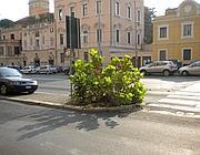 Strisce invisibili in via Nomentana di fronte a via dei Villini (foto di un lettore)
