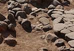 27 metri di Collatina -  In pieno quartiere di Casal Bertone sono stati ritrovati ventisette metri di basolati riconosciuti dagli archeologi della soprintendenza speciale di Roma come un tratto dell'antica Via Collatina con tanto di paracarri. Recuperati anche ceramiche, lucerne, monete di bronzo, frammenti di marmo databili tra il I e il IV secolo d.C. Ai lati del tracciato della via Collatina è stata poi rimessa in luce una necropoli. (foto Omniroma)