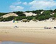 Le dune di Sabaudia