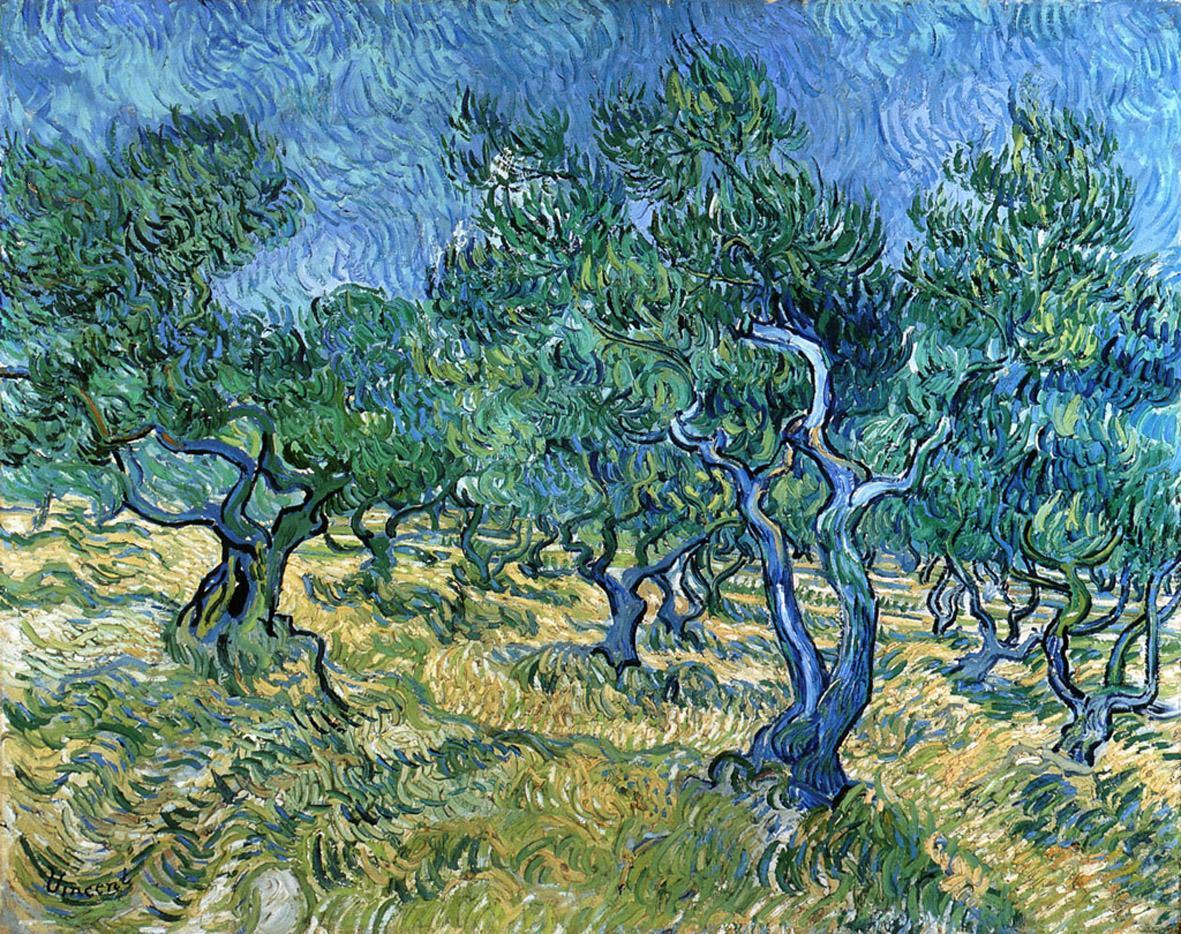 Il dipinto «L'Uliveto» di Van Gogh