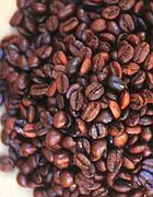 Chicchi di caffè brasiliano