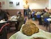 Il tartufo bianco ricevuto in regalo dal Papa e donato alla mensa Caritas (Montesi)