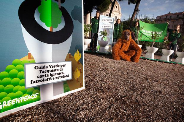 selezione premium gamma esclusiva nessuna tassa di vendita Occhio alla carta igienica - Foto del giorno - Corriere Roma