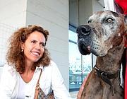 Monica Cirinnà con un cane alano salvato