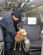 Controlli sugli aerei (Foto La Presse)