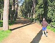 Un podista si allena a Villa Borghese (foto Proto)