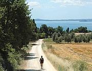 La tappa della Francigena sul lago di Bolsena