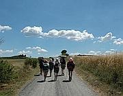 Pellegrini sulla Francigena nell'Alto Viterbese