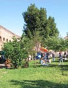Giardino autogestito in via Casilina Vecchia (Torriero)