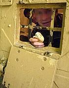 Un detenuto in cella a Regina Coeli
