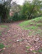 Passeggiata sul monte dei Cocci
