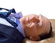 Il volto di Berlusconi