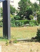Il tronco di un tiglio abbattuto alla base di un cartellone