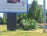 Uno degli alberi abbattuti in via Tina Pica giace ai piedi di un cartellone
