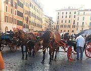 Botticelle con i loro cavalli a piazza di Spagna (foto Omniroma)