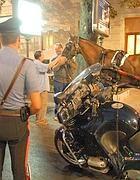 Il precedente: il cavallo svenuto per la fatica in via Veneto (Proto)