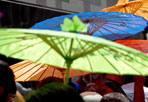 Domenica bollente - Sull'Italia arriva «Ulisse», la quarta ondata di caldo africano dell'estate (dopo Scipione, Caronte e Minosse). Domenica 29 e lunedì 30, la temperatura a Roma toccherà i 35-36°, percepiti come 38° per via dell'effetto dell'umidità. Stando agli esperti del sito meteo.it, la temperatura nella Capitale resterà molto alta (intorno ai 35°) per l'intera settimana. Vale la pena ricordare i consueti consigli per affrontare il caldo torrido, soprattutto per le persone anziane e i bambini: evitare di uscire nelle ore più calde, sospendere l'attività sportiva, bere molta acqua per compensare la disidratazione dovuta al sudore (Ansa/Percossi)