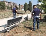 Il Parco dell'Alessandrino (Foto Proto)