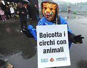 Una manifestazione contro i circhi con gli animali (Fotogramma)