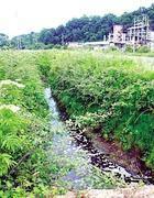 Un corso d'acqua inquinato nella Valle del Sacco