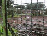 Amianto nell'area dell'ex velodromo (foto Russo)