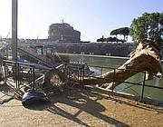 Una banchina dei Battelli di Roma divelta da un grande tronco (foto Jpeg)