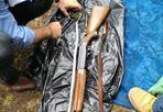 Un fucile all'asilo nido - Era nascosto nella siepe che costeggia l'asilo nido di Battista Panzera, a Tor Bella Monaca. Un fucile da caccia Franchi, rubato nell'aprile scorso, avvolto in un asciugamano e poi in un sacco di plastica. La polizia indaga per capire se l'arma sia stata abbandonata oppure lasciata lì, a due passi dai bambini, per essere usata per commettere reati (foto Proto)