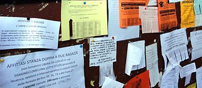 Cartelli di affitto su una bacheca universitaria a Roma