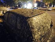 Auto coperte di guano sul lungotevere (Jpeg)
