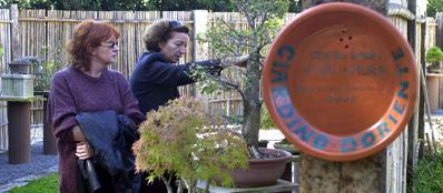 A caracalla un angolo di oriente nel giardino segreto ceramiche e bonsai - Giardino d oriente roma ...