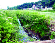 Corso d'acqua inquinato nella Valle del sacco